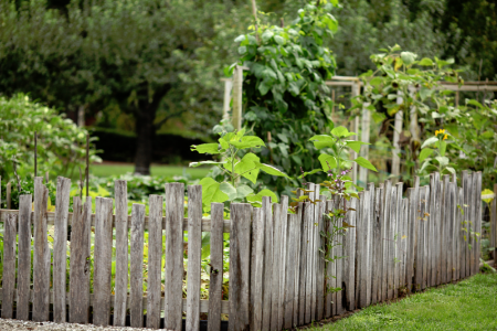 6 Inexpensive Ideas for Garden Fencing | DoItYourself.