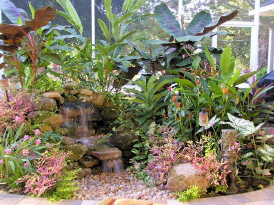 My waterfall tropical garden for Garden waterfalls do it yourself