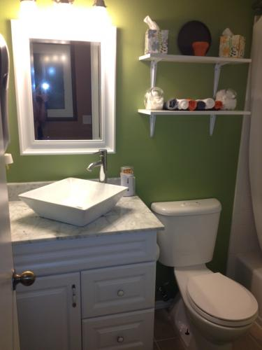Spare Bath Remodel